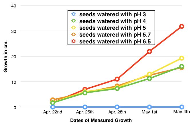 average bean germination graph