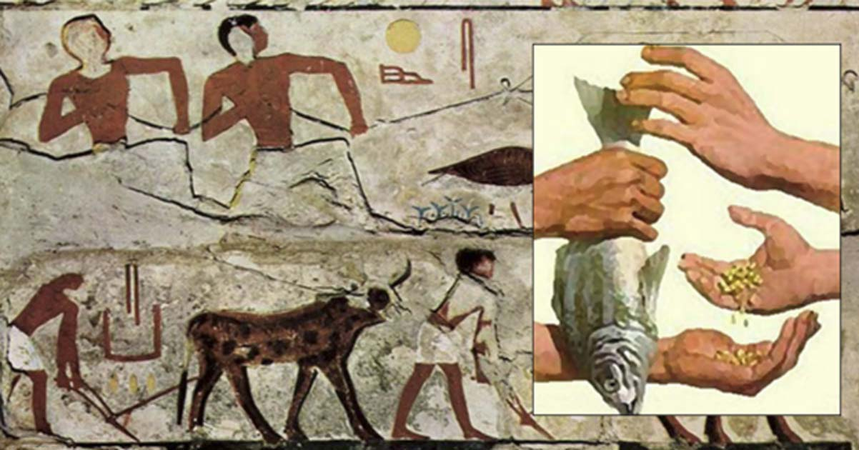 The Mesopotamia Trading System by eric chanko
